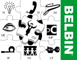 Belbin - IPM - International People Management | Trainings and seminars picture